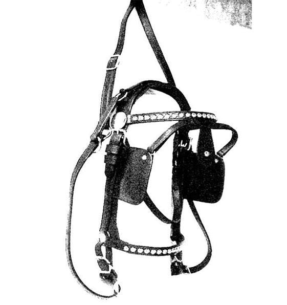 Leather Driving Bridle Spotted Draft