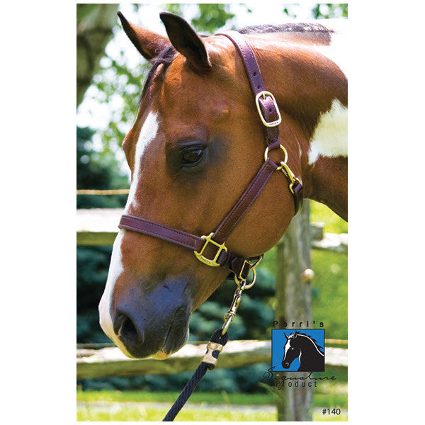 "1"" Leather Draft Turnout Halter"