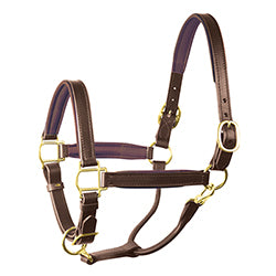 Leather Padded Halter