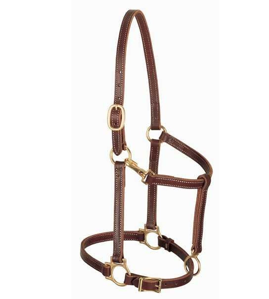 "3/4"" Leather Horse Halter"