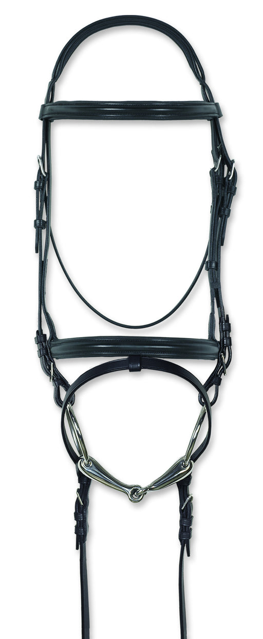 Classic Padded Bridle W/Flash