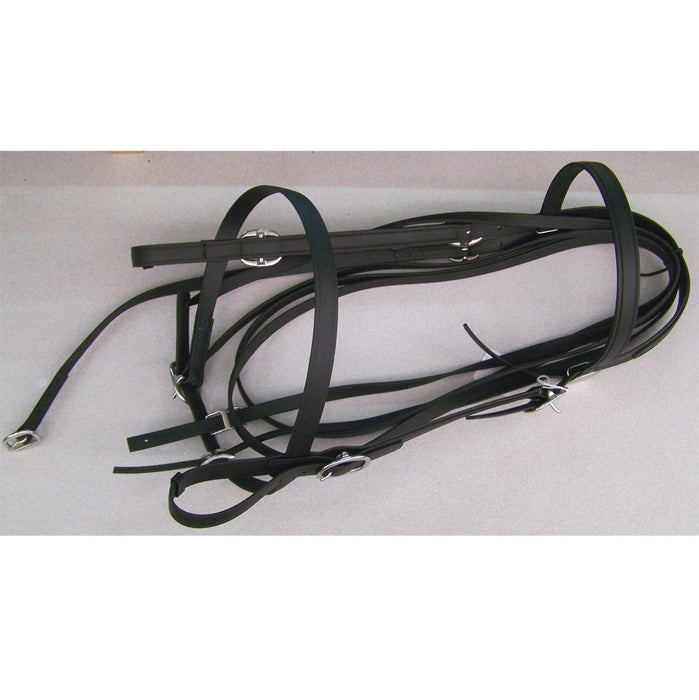 Riding Bridle Beta With Noseband Without Bit