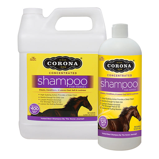 Corona Shampoo - Concentrated