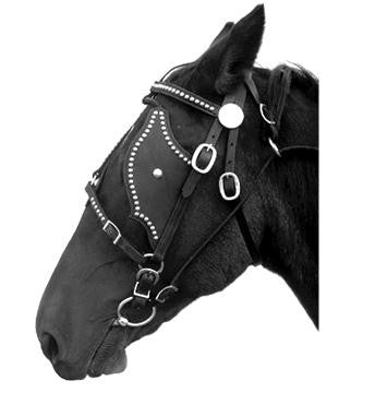 Leather Driving Pigeon Wing Bridle Spotted Horse