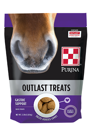 Purina Outlast Horse Treat