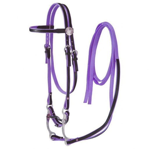 Purple Nylon With Leather Overlay