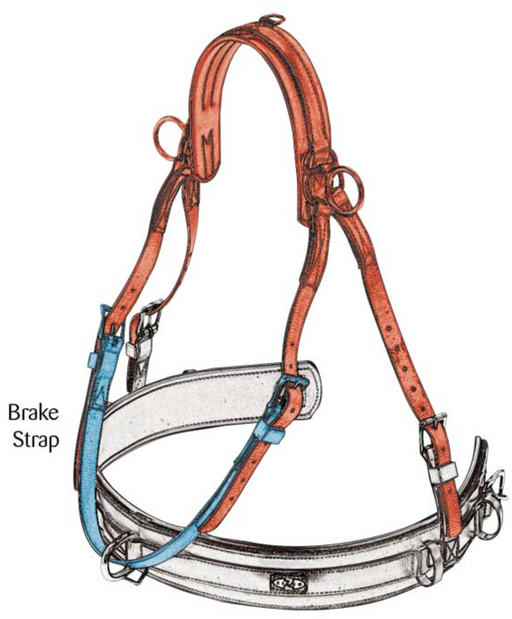 Zilco Driving Harness ZGB and Elite Girth Extenders for Classic