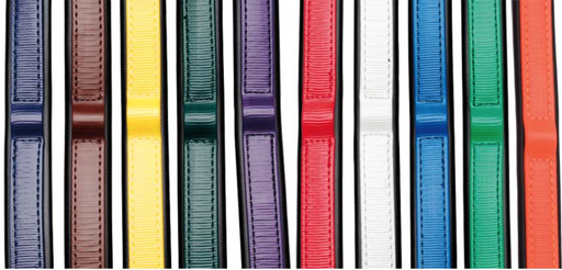 Colored Bridle Browbands