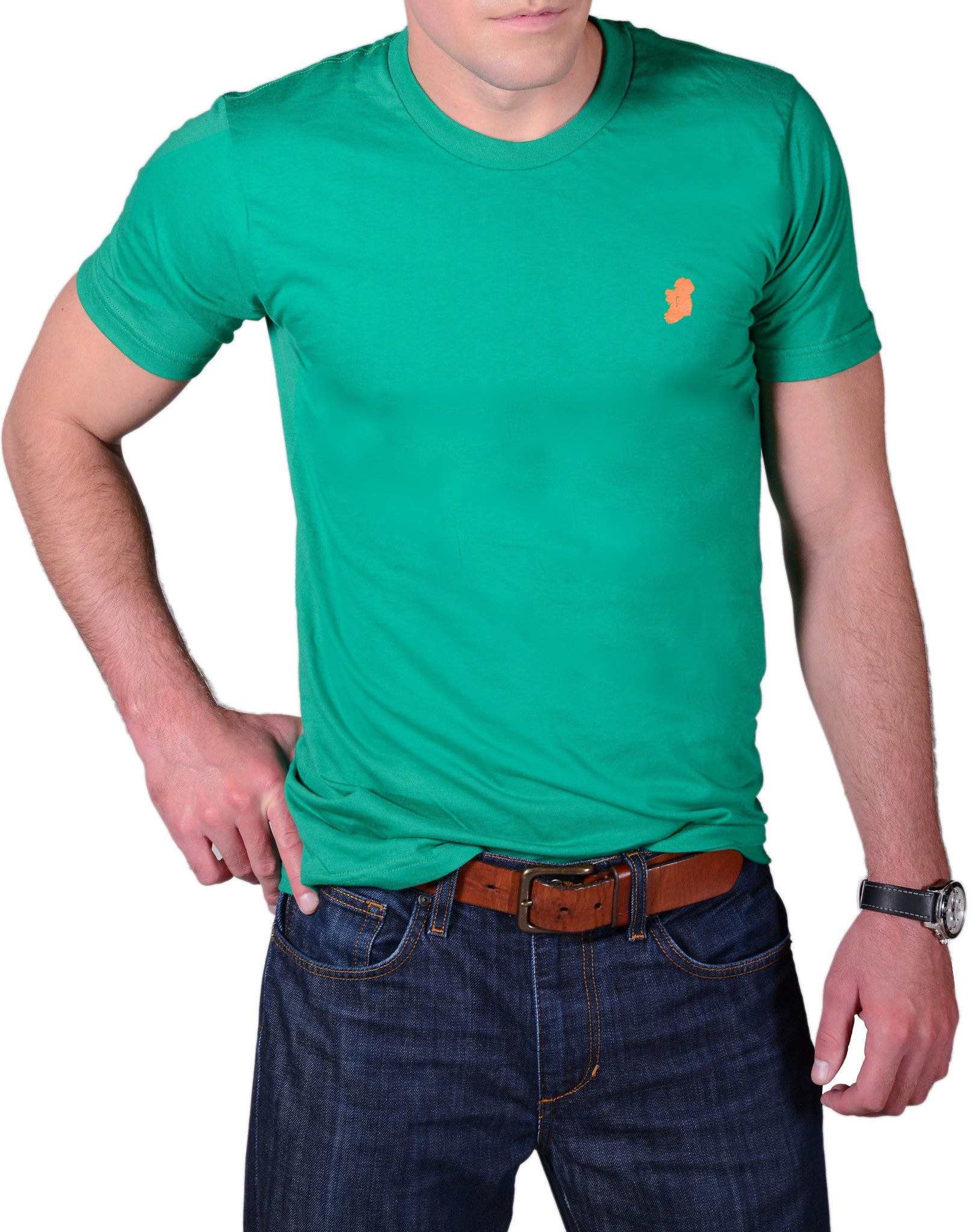 Men's Kelly Green Slim Fit Irish T Shirt by Ireland Shirt