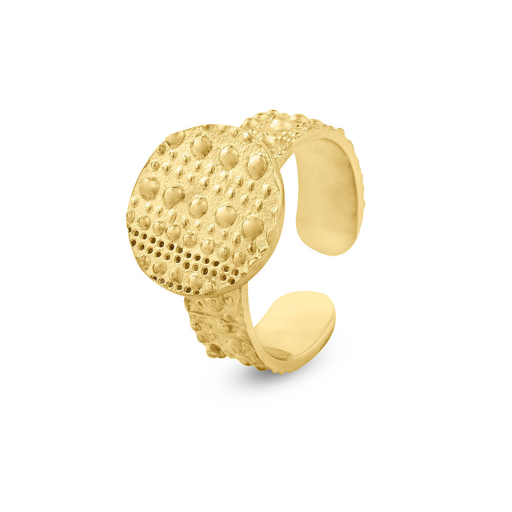 Ring Circulo Plano Small - Sophie Simone Designs