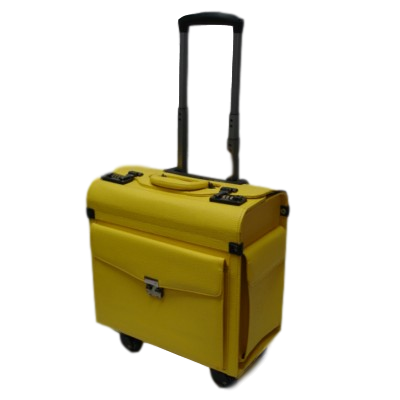 Pilots Case - Yellow