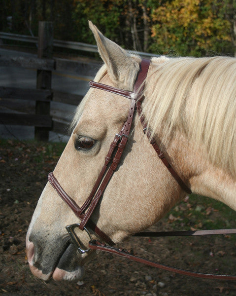 McBride Fancy Stitched Bridle by Smith-Worthington
