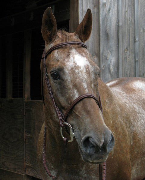 McBride Raised Snaffle Bridle by Smith-Worthington