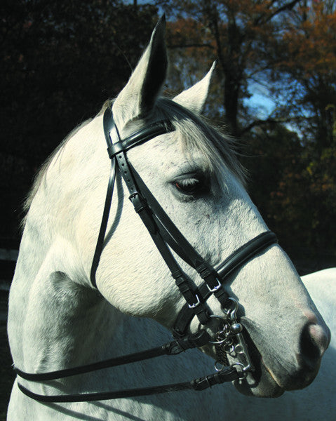 McBride Weymouth Dressage Bridle by Smith-Worthington