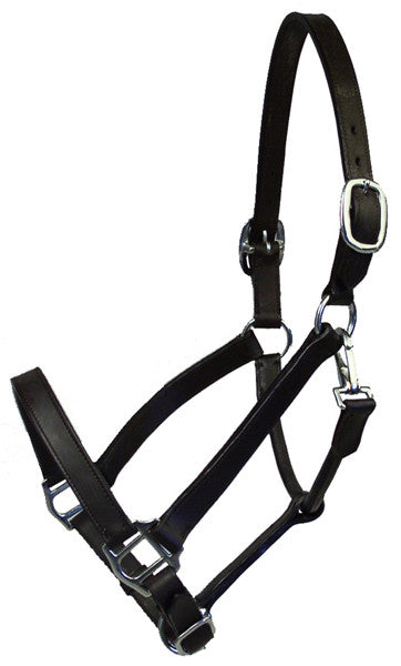 Wexford Cob/Pony Halter by Smith-Worthington