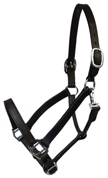 Wexford Horse Halter by Smith-Worthington