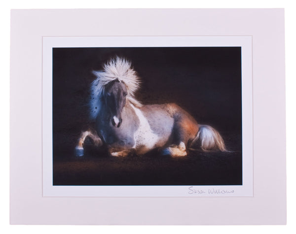 """Equus IV"" Print by Windhorse One Studios"