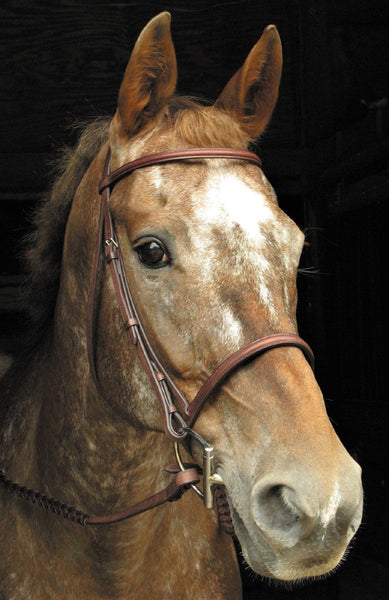 Signature Raised Bridle by Smith-Worthington