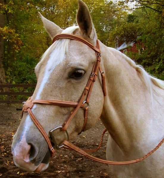 Signature Figure 8 Bridle with Rubber Reins by Smith-Worthington