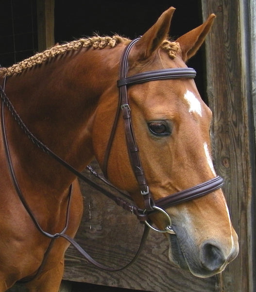 Elite Raised Padded Bridle by Smith-Worthington