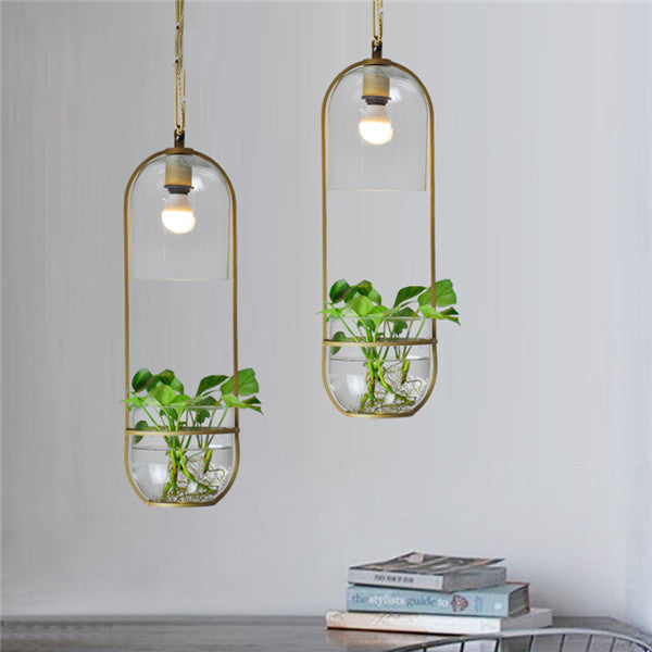 Hydroponic Plant Glass Pendant Light PL492 - Cheerhuzz