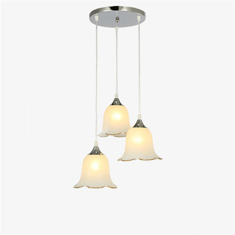 Modern Wrought Iron Pendant Light PL647