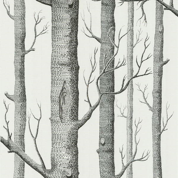 Birch Tree Wallpaper by Cole & Sons - Cheerhuzz