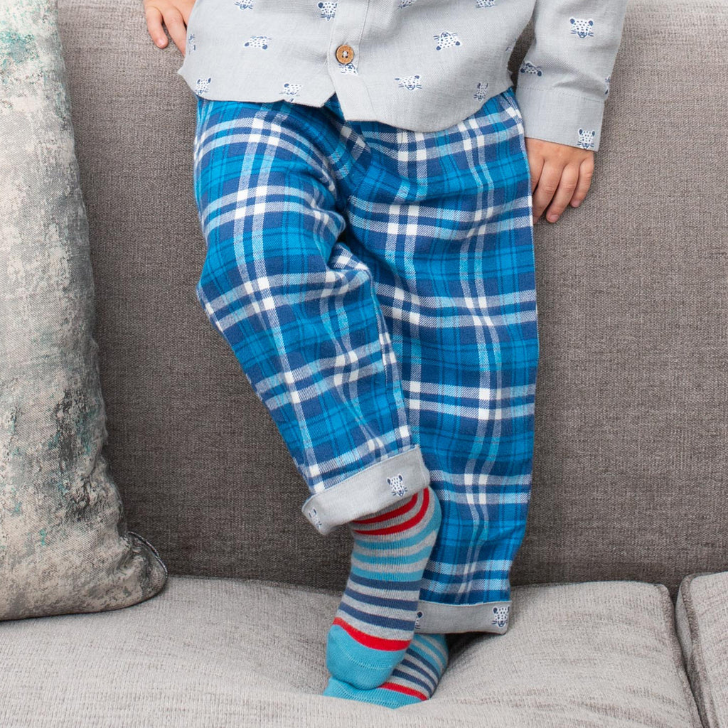 Cool Cat / Plaid reversible pull-ups - 100% organic cotton