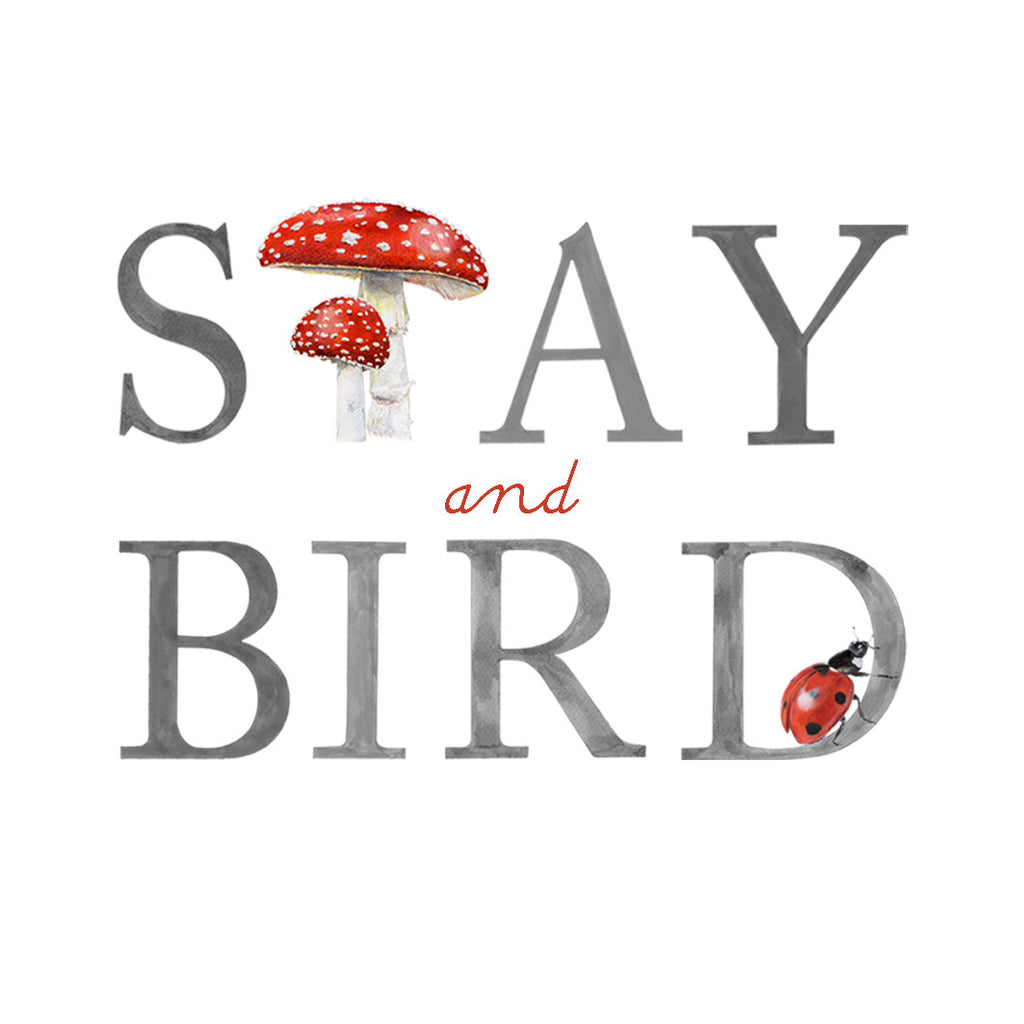 Introducing the beautiful debut collection by Stay and Bird...