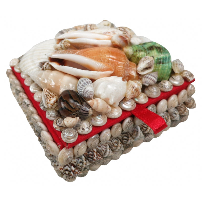 Shell Treasure Box