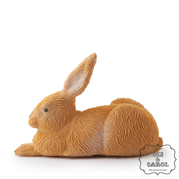 Gilbert the Rabbit by Oli & Carol