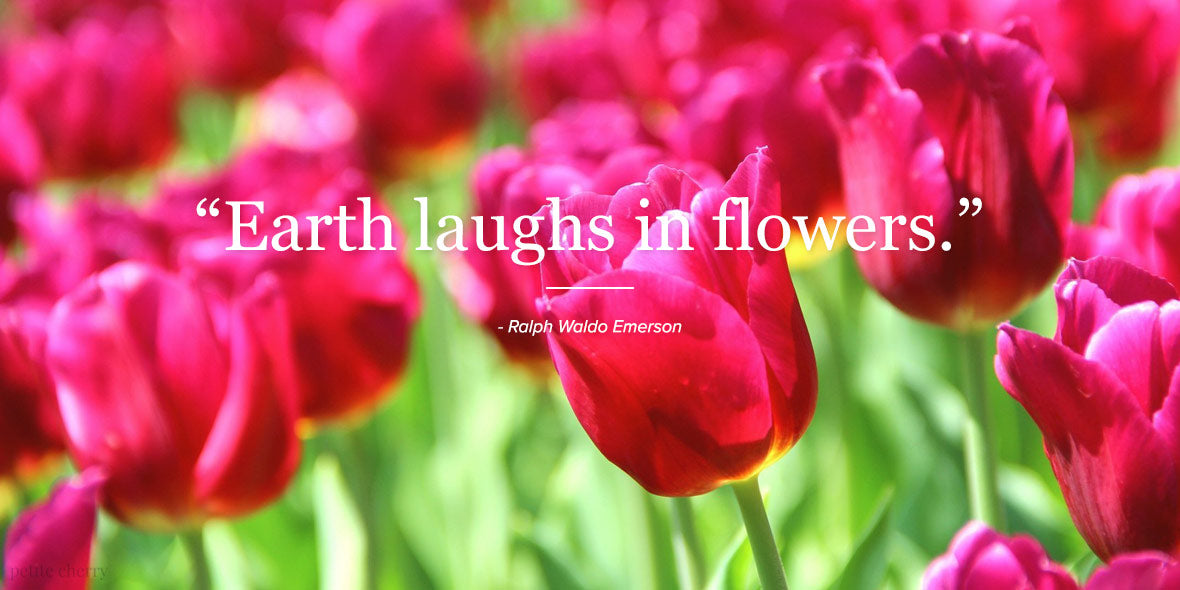 Earth laughs in flowers. - Ralph Waldo Emerson