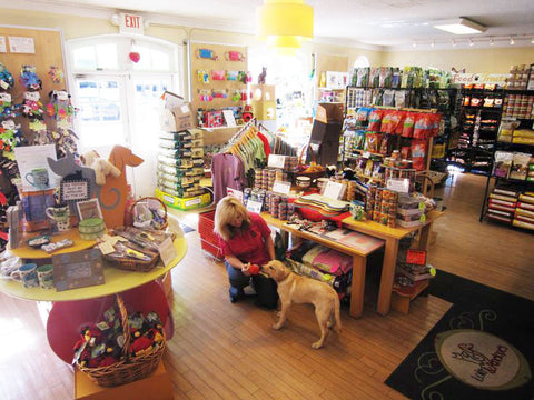 The interior of Lola & Penelope's, a cat and dog boutique located in St. Louis.