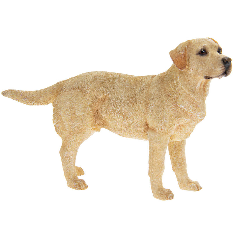 Labrador Dog Standing Ornament Figurine Realistic Boxed Gift Leonardo collection