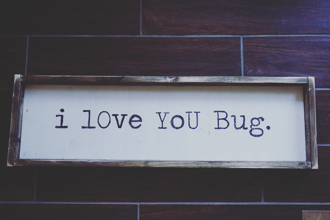 I Love You Bug