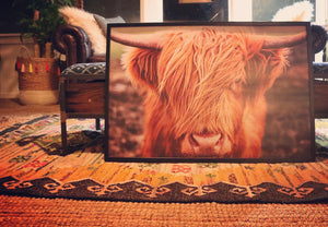 Chip The Highland Cow- Print or Wood Sign