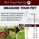 Dog Wheelchair by Best Friend Mobility XS