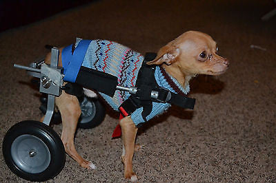 Dog Wheelchair by Best Friend Mobility XXS