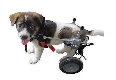 Dog Wheelchair by Best Friend Mobility - Small