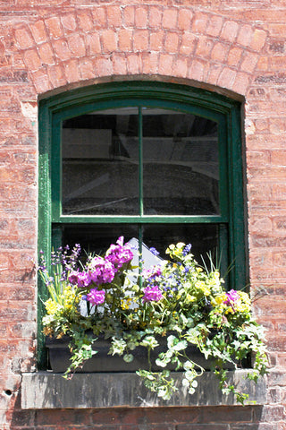 Window Box #1