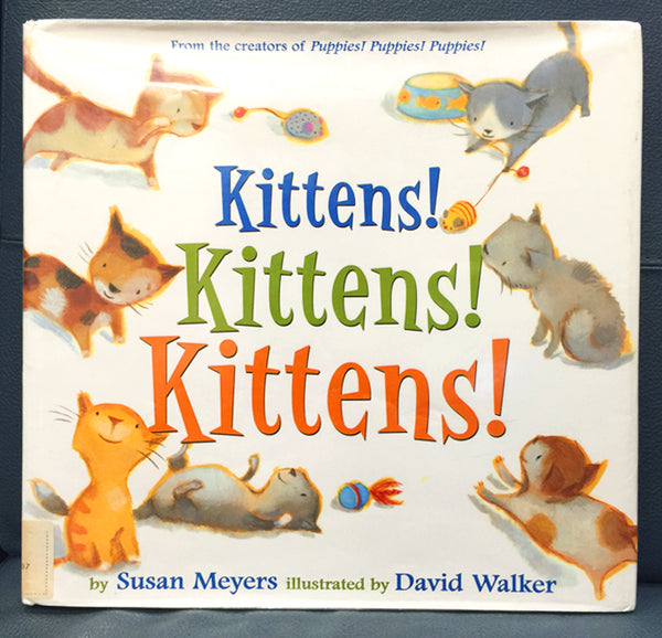 Kittens, Kittens, Kittens Book Cover