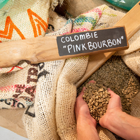 Microlot: Colombia Pink Bourbon|Microlot: Colombie Pink Bourbon