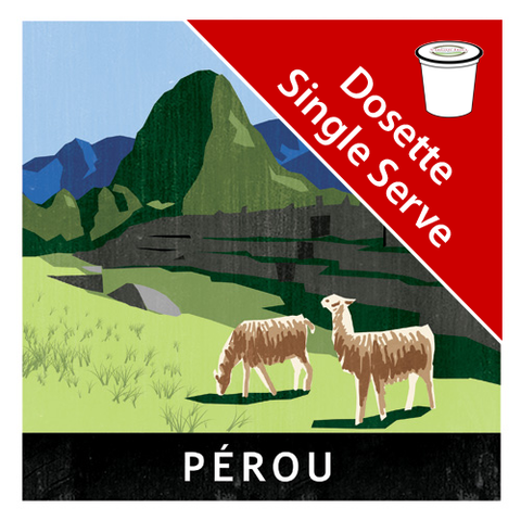 Peru Chanchamayo Black Single Serve|Pérou Chanchamayo noir en dosettes