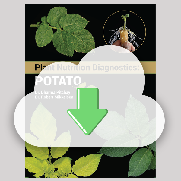 Digital Download - Plant Nutrition Diagnostics: Potato