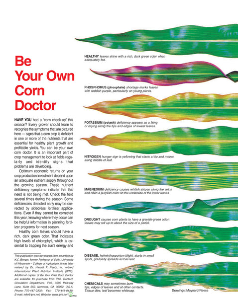 Be Your Own Corn Doctor