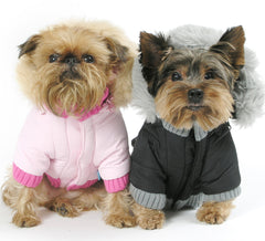 dog jackets + coats