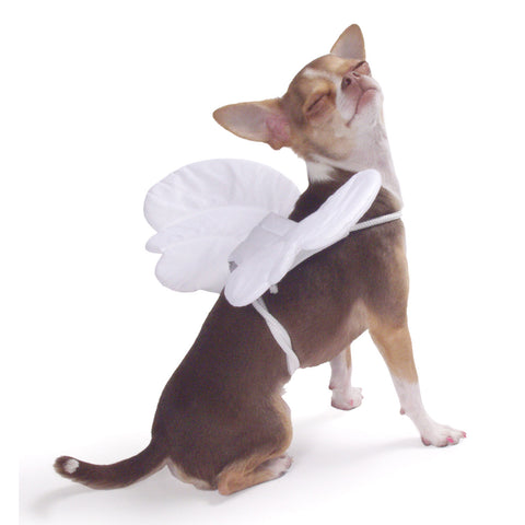 Angel Wings, One Size (for pets up to 50 lbs)