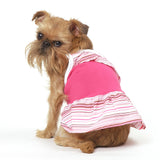 Bubblegum Dog Dress, Sizes XS – XL