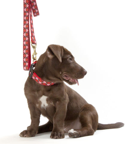 Cocoa Heart Step-In Harness Small