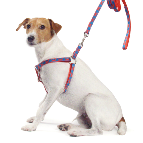 Crab Shack Harness, Blue, Size Large
